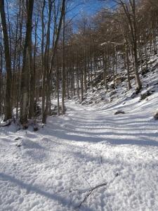 Inizio del sentiero CAI 924
