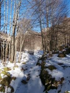 Neve durante la salita a casera Val de Friz