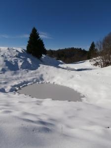 Piccola lama ghiacciata poco sotto lo Zuc di Valliselle