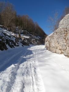 Verso casera Val de Friz