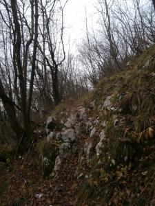 Sentiero che porta alla Lobia