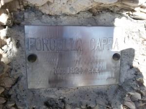 Tabella di forcella Capra