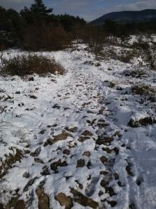 Oggi neve e freddo, ma non molliamo