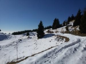 Marzia e Sergio sugli alpeggi del Col dei S'Cios