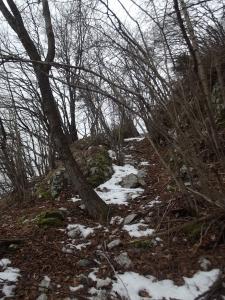 """Curve studiate per far rallentare il legname sul crinale delle """"Orse"""""""