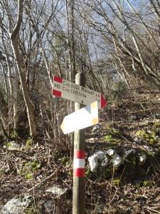 Allenamento: sentiero CAI 982
