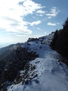 Sulla selletta che divide il Toriòn dal Col della Gallina
