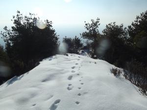In cima a Il Torrione (1320 metri slm)