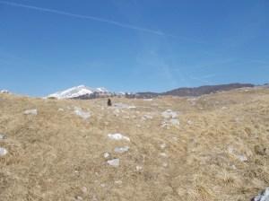Sulla selletta in prossimità della cima