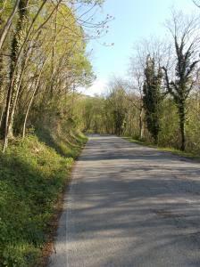 La strada che porta a Madonna del Monte