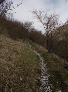 Ultimo tratto di sentiero in salita