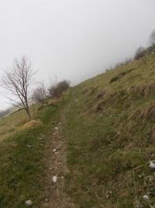 Sentiero CAI 988
