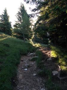 Sentiero CAI 926