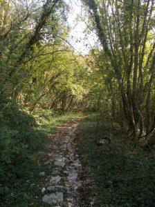 Inizio del sentiero oltre la sbarra che si trova poco sopra la ristorante Belvedere