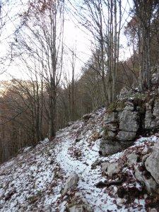 Sentiero delle Carbonaie