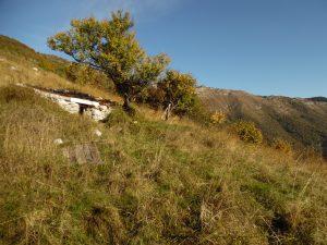 Dal sentiero CAI 981, vista verso il Torriòn