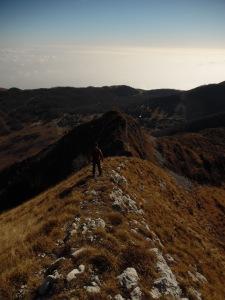 Scendendo per la dorsale Sud del Cimon dei Furlani