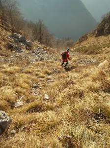 Scendendo verso la Val Tochel