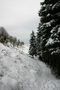 Scendendo attraverso il sentiero CAI 982