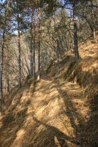 Verso il monte Arghena