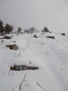La dorsale dove, comq quasi sempre, nessuno è ancora passato dopo la nevicata