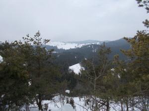 Vista verso il Col dei S'Cios