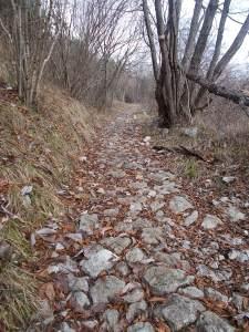 Antico lastricato lungo il sentiero CAI 981
