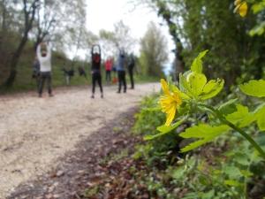 Escursione del benessere, perché oltre alla camminata nella natura Fabrizio fa svolgere anche semplici esercizi fisici a corpo libero