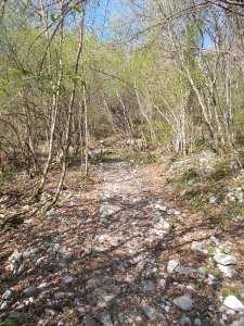 All'inizio del sentiero CAI 982