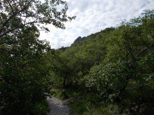 In val Rosandra, ecco in lontananza lo spigolo da percorrere
