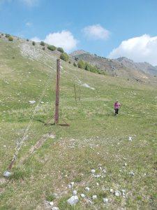 Fine del sentiero, qui si tosavano le pecore