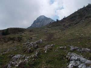 Ruderi casera del Bergon e sullo sfondo cima Lodina