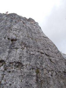 Vista della parete della Quarta Alta dall'intaglio