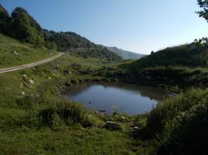 La lama nei pressi dei ruderi di casera Boz