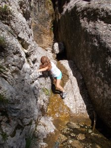 Si arrampica