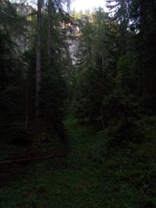 Ex sentiero CAI 387