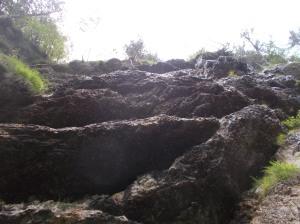 Sorgente sulle pareti nei pressi delle impronte di dinosauro