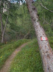 Sentiero CAI 361