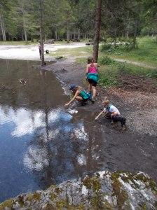 A caccia di girini