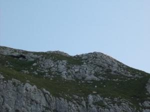 Uno dei tanti camosci visti in lontananza che corre sulla dorsale del Cimon dei Furlani
