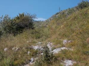 Parte alta del sentiero CAI 982