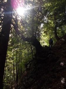 Salendo lungo il sentiero Marini