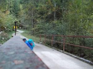 """Pont dei Ross con """"qualcuno"""" che scatta foto"""