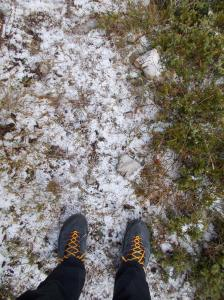 Spruzzata di neve