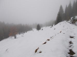 Neve, freddo e grigio ma il tutto sembra magico