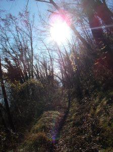 Al sole sul sentiero CAI 982