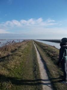 Sul terrapieno che divide il mare fra il bacino e il canale