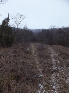 A sinistra la risina, a destra il sentiero