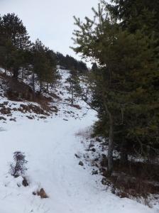 Pestando un po' di neve
