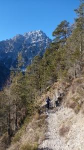 Lungo il sentiero, scorcio sul maestoso Bosconero
